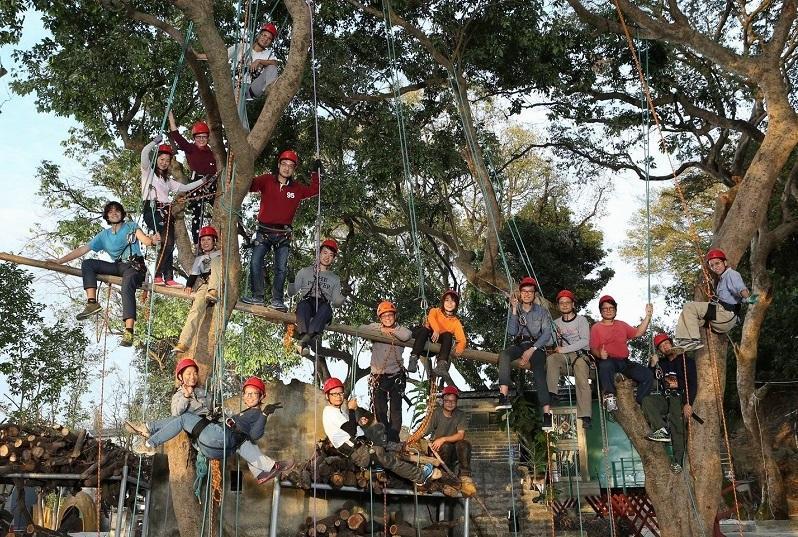 樹藝行業設不同工種,其中攀樹師和樹藝師的分工可說是一文一武。