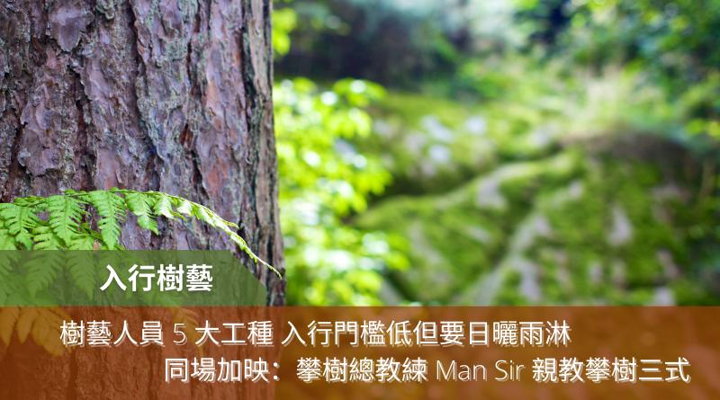入行樹藝丨樹藝人員 5 大工種 入行門檻低但要日曬雨淋 同場加映:攀樹總教練 Man Sir 親教攀樹三式
