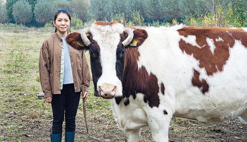 旅居荷蘭港人、食物設計師譚君妍與Romie 18的合照。她透過紀錄及分享母牛Romie 18的背景,及宰後被製作成食物及加工品過程,讓人明白牧牛怎樣走過一生。(Angéline Behr攝)