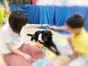 小朋友在學習照顧動物時,逐步學會跟人相處。